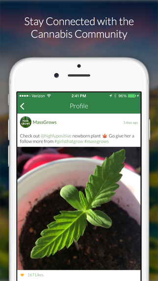 MassRoots: The Medical Cannabis Community