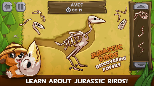 Jurassic Birds - Discovering Fossils Prof