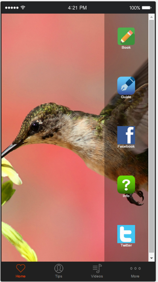 Bird Watching - Discover The Fascinating World of Birds