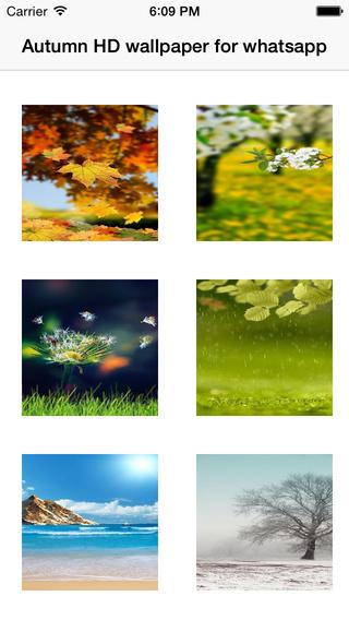 Autumn HD wallpaper for whatsapp
