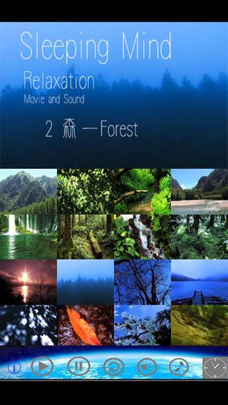 Forest:Healing Relax