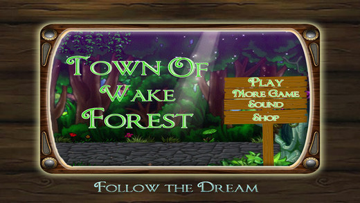 Town of Wake Forest - Hidden Objects