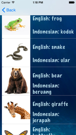 Hidden Pics - Indonesian