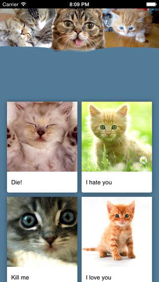 Cat Communicator