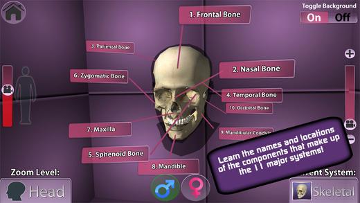 PlayAR Human Anatomy 4D