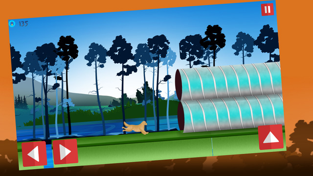 Dog Agility 2 : Obstacles Dressage Race Contest Extreme Fun Edition - Gold Edition