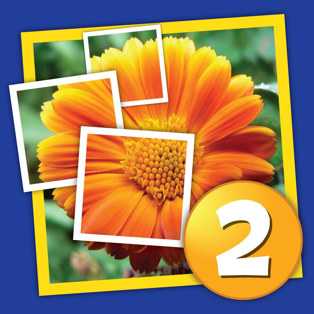 Угадай слова ответы на игру четыре картинки одно слова 13