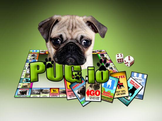 Pug IO screenshot 4