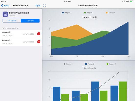 SOTI MobiControl iPad Screenshot 2