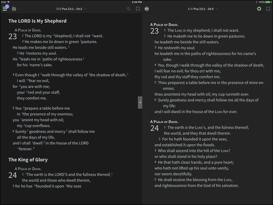 NIV Bible BibleReader iPad Screenshot 1