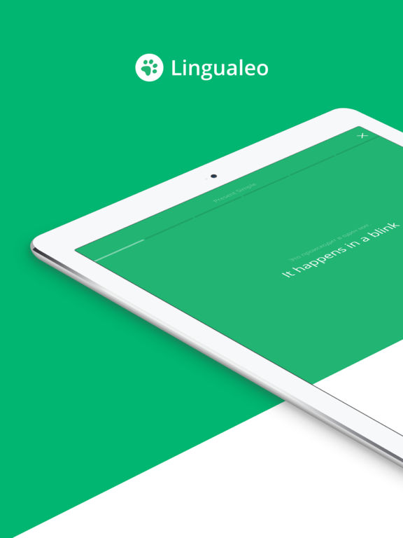 Английский язык с Lingualeo: учить бесплатно на iPad