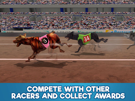 Dog Racing Tournament Sim 3D Full screenshot 7