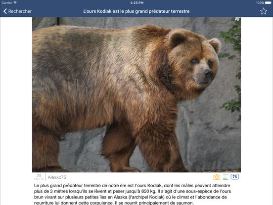 Se Coucher Moins Bête iPad Screenshot 2