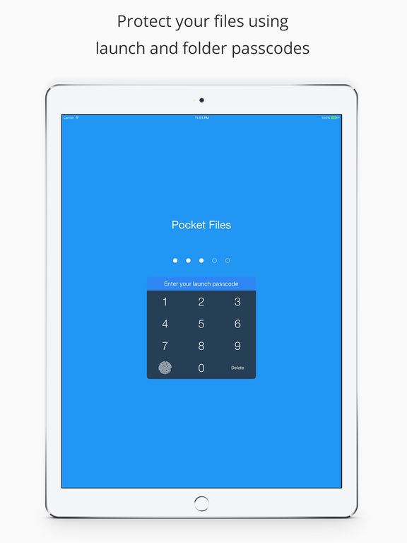 Pocket Files Pro - Hide & lock photo, video, docs Screenshots