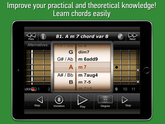 International Guitar Chords iPad Screenshot 2