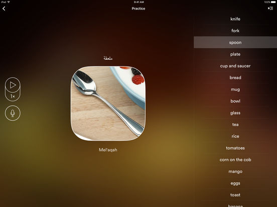 uTalk HD Arabic iPad Screenshot 3