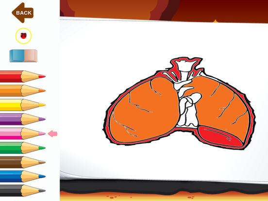 App Shopper Atlas Of Body Parts Anatomy Human Coloring Books Games