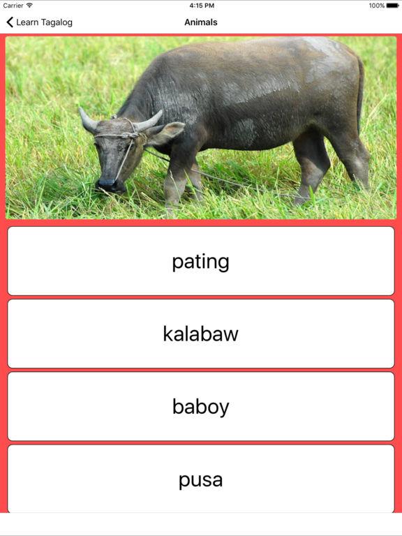 Learn Tagalog screenshot 10