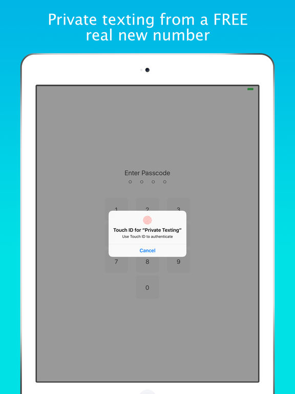Screenshots of Smiley Private Texting - FREE anonymous sms number for iPad