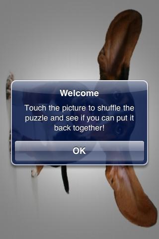 Flying Dog Slide Puzzle screenshot #2
