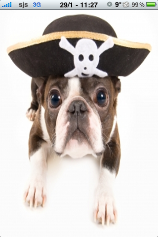 Pirate Dog Slide Puzzle screenshot #1