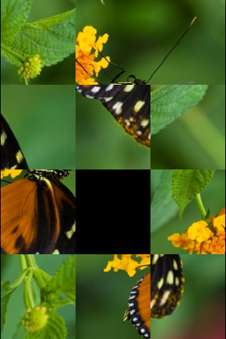 Tropical Butterfly Slide Puzzle screenshot #2