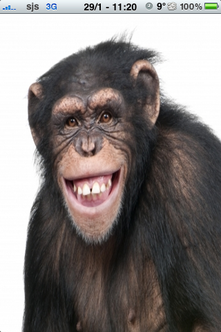 Happy Chimpanzee Slide Puzzle image #1