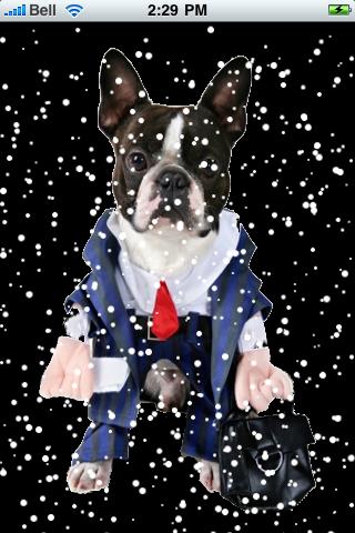 Business Man Dog Snow Globe screenshot #2
