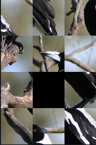 SlidePuzzle - Magpie screenshot #1