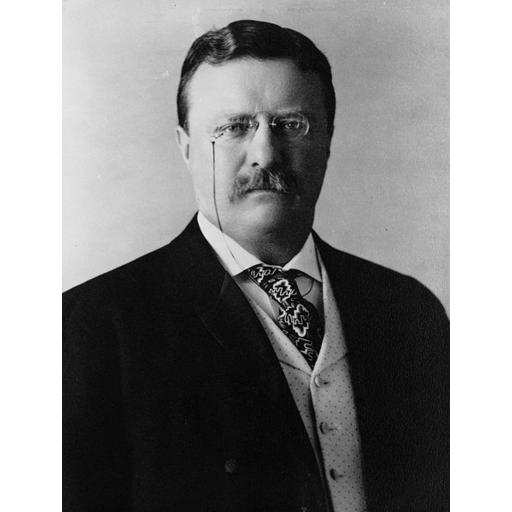 Theodore Roosevelt - Just the Facts