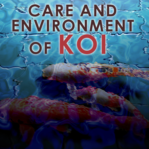 Care And Environment Of Koi