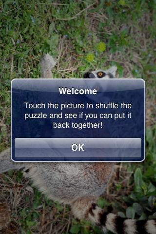 Lemur Slide Puzzle screenshot #3