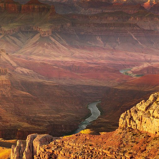 The Grand Canyon Study Guide