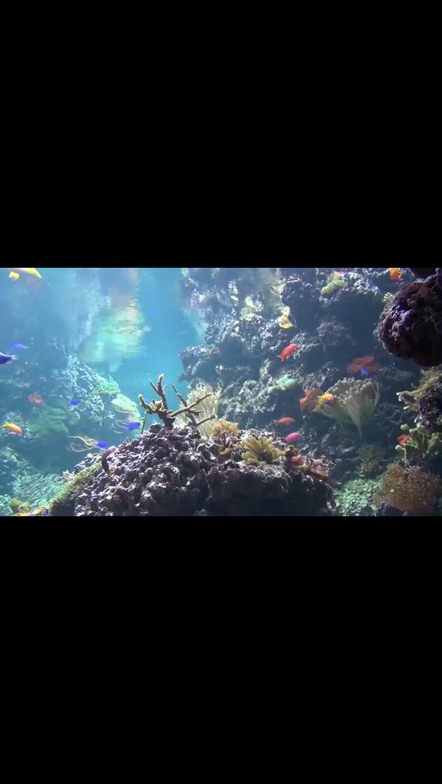 Screenshot 2 of 9