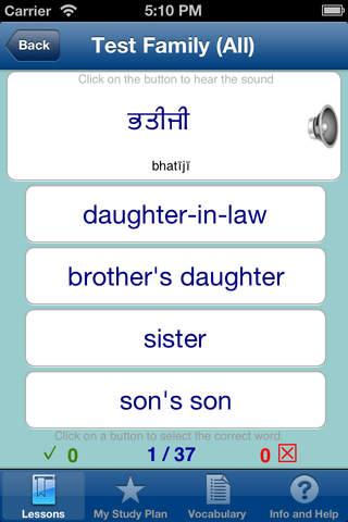 Learn Punjabi - náhled