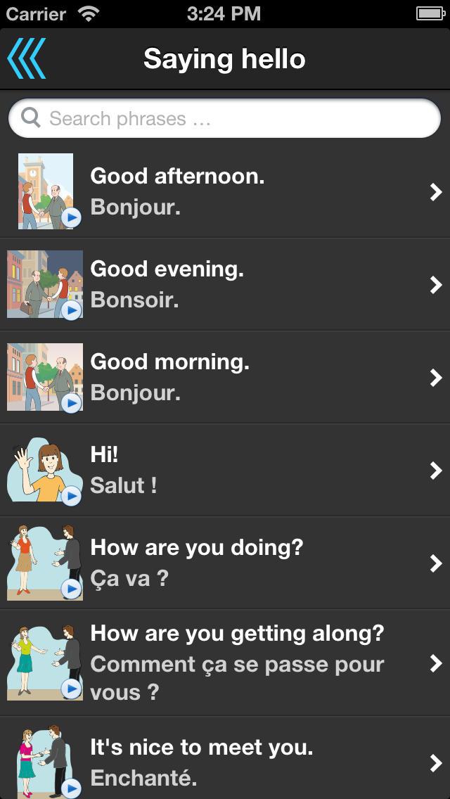 Phrasebook - over 30 languages screenshot 2