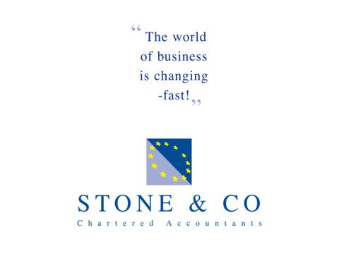 Stone&Co Chartered Accountants screenshot #1