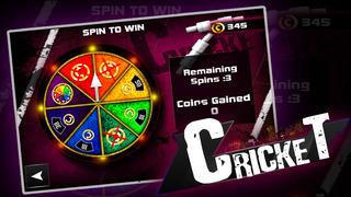 Cricket 3D : Street Challenge screenshot 5