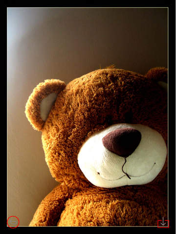 Teddy Bear Art Theme HD Wallpaper and Best Inspirational Quotes Backgrounds Creator screenshot 7