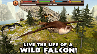 Falcon Simulator screenshot 1