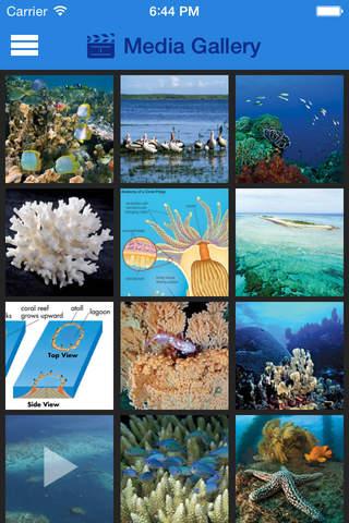 Britannica Kids: Coral Reefs - náhled