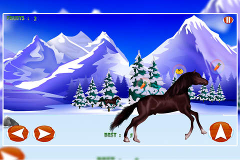 Snow Valley Horse Race Competition : The Winter Ag - náhled