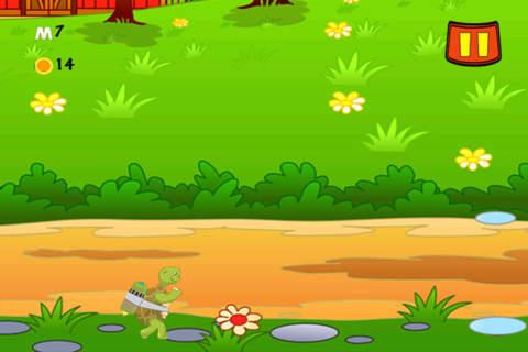 Super Flying Turtle LX - náhled