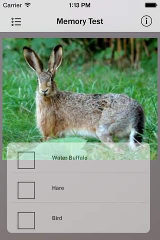 Animals - Pocket Zoo - náhled