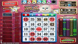 Glamour Puss Bingo screenshot 2