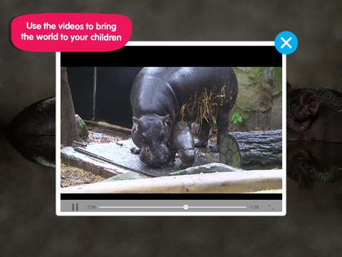 ABC ZooBorns screenshot 10