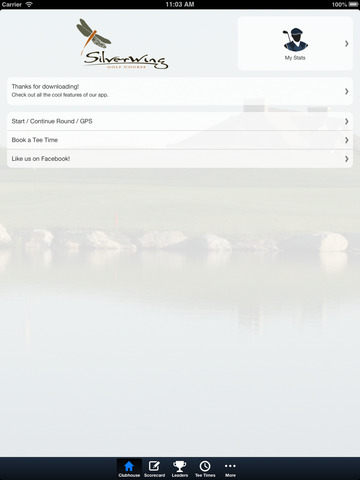 Silverwing Links screenshot 7