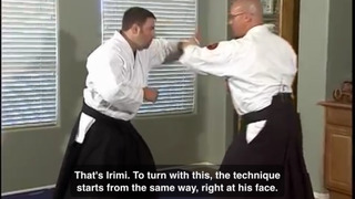 Aikido ! screenshot 3