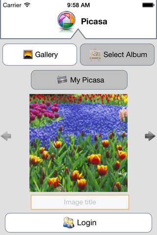 Picasa Pro - náhled