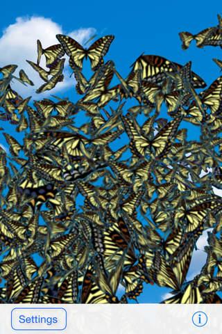 蝶が飛ぶ。 - náhled
